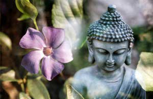 Buddha-fo-rEssential-oils