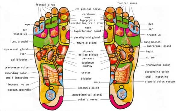Foot-reflexologie-600x370